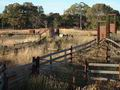 Binalong Stock Yards